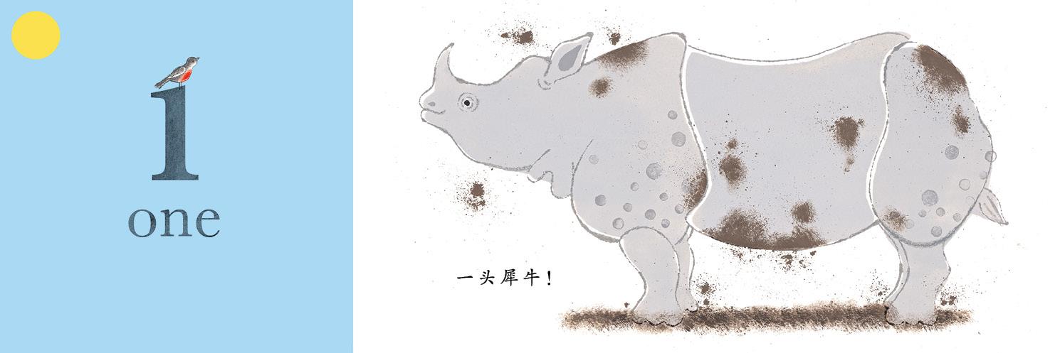 猜猜看是什么动物呢?翻开书中美丽的折页,就能找到答案.